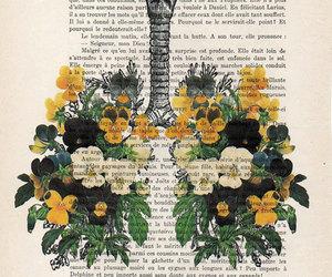 anatomy, illustration, and skeleton image