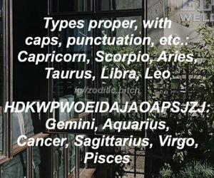 funny and zodiac image