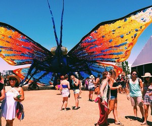 butterfly, coachella, and festival image