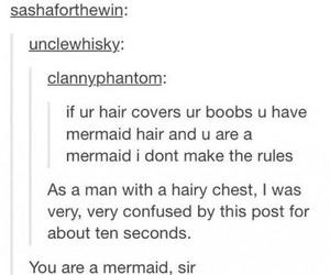 funny, mermaid, and hair image