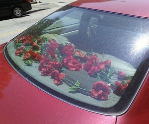 red, car, and rose image
