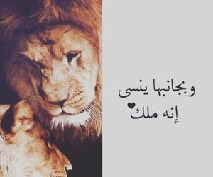 اسد, king, and حُبْ image