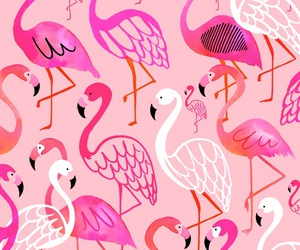 pink, background, and flamingos image