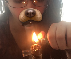 bong, dog, and fire image