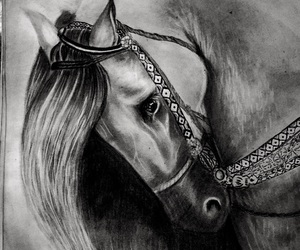 horse, art, and drawing image