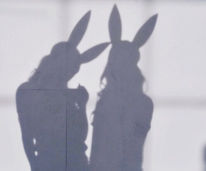 bunny, shadow, and friends image
