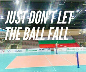 volley image