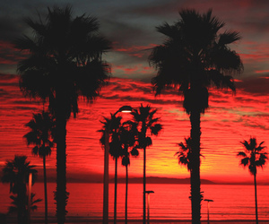 sunset, beach, and red image