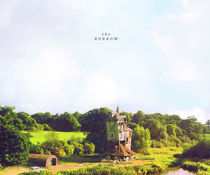 harry potter and the burrow image