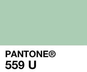 pantone, green, and pretty image