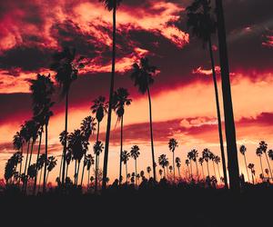 amazing, gorgeous, and photography image
