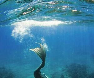 mermaid, fantasy, and ocean image