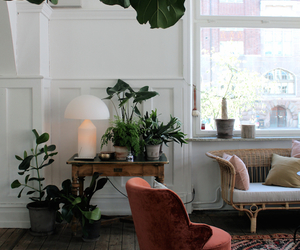 interior, inspiration, and home image