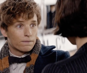 fantastic beasts, potterhead, and newt scamander image