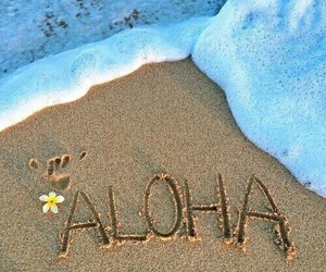 Aloha, strand, and cute image