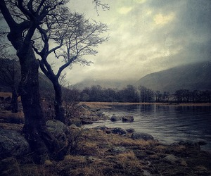 goth, gothic, and landscape image