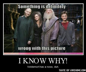 funny, harry potter, and voldemort image