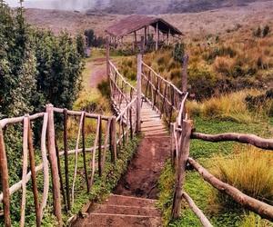 ecuador, landscape, and nature image
