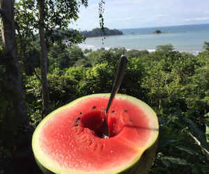 summer, watermelon, and love image