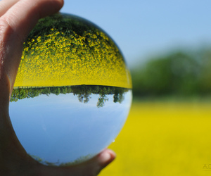 color, crystal ball, and photography image