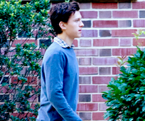 spider man and peter parker image