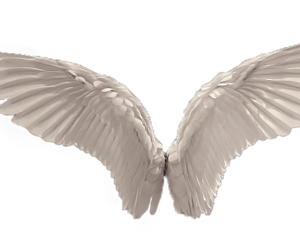angel, png, and wings image