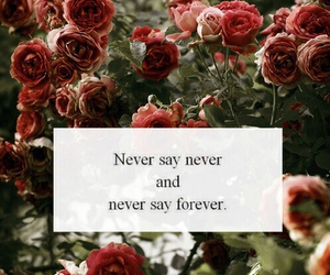 forever, never, and quotes image