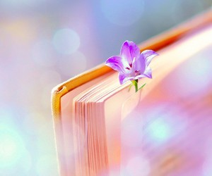 book, flowers, and beauty image