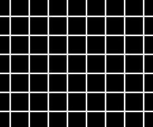 black, white, and grid image