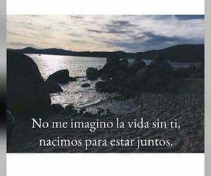 amor, motivacion, and consejos image