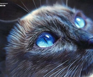 cat, art, and eyes image