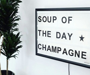 champagne, quote, and drink image