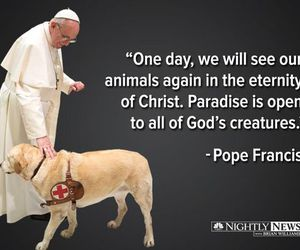 animals, heaven, and dogs image