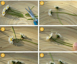 diy and flower image