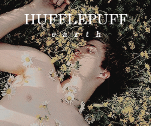 book, books, and hufflepuff image
