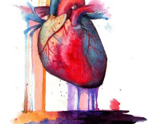 anatomy, watercolor, and art image
