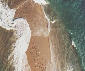 beach, vacation, and Hot image