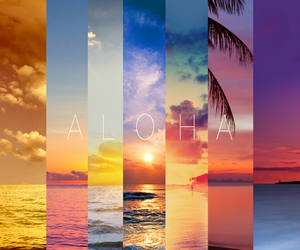 Aloha, beach, and sun image