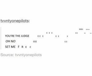funny, judge, and Lyrics image
