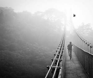 black and white, bridge, and fog image