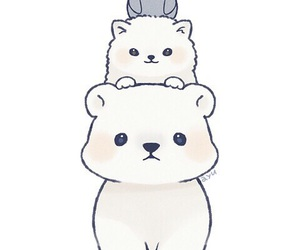 bear, cat, and pretty image