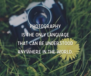 photography, world, and quotes image