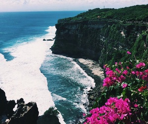 flowers, ocean, and summer image