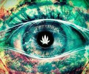 eye, weed, and eyes image