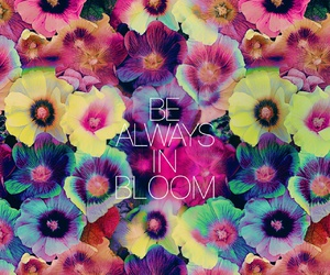 bloom, flowers, and quote image