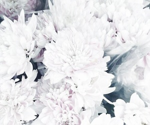 beautiful, classy, and flowers image