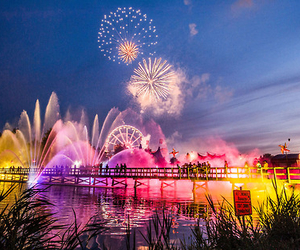 fireworks, Tomorrowland, and colors image