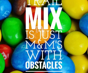 easel, trail mix, and funny image
