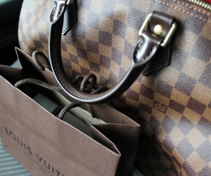 Louis Vuitton, bag, and photography image