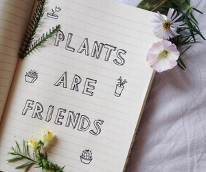 plants, flowers, and grunge image
